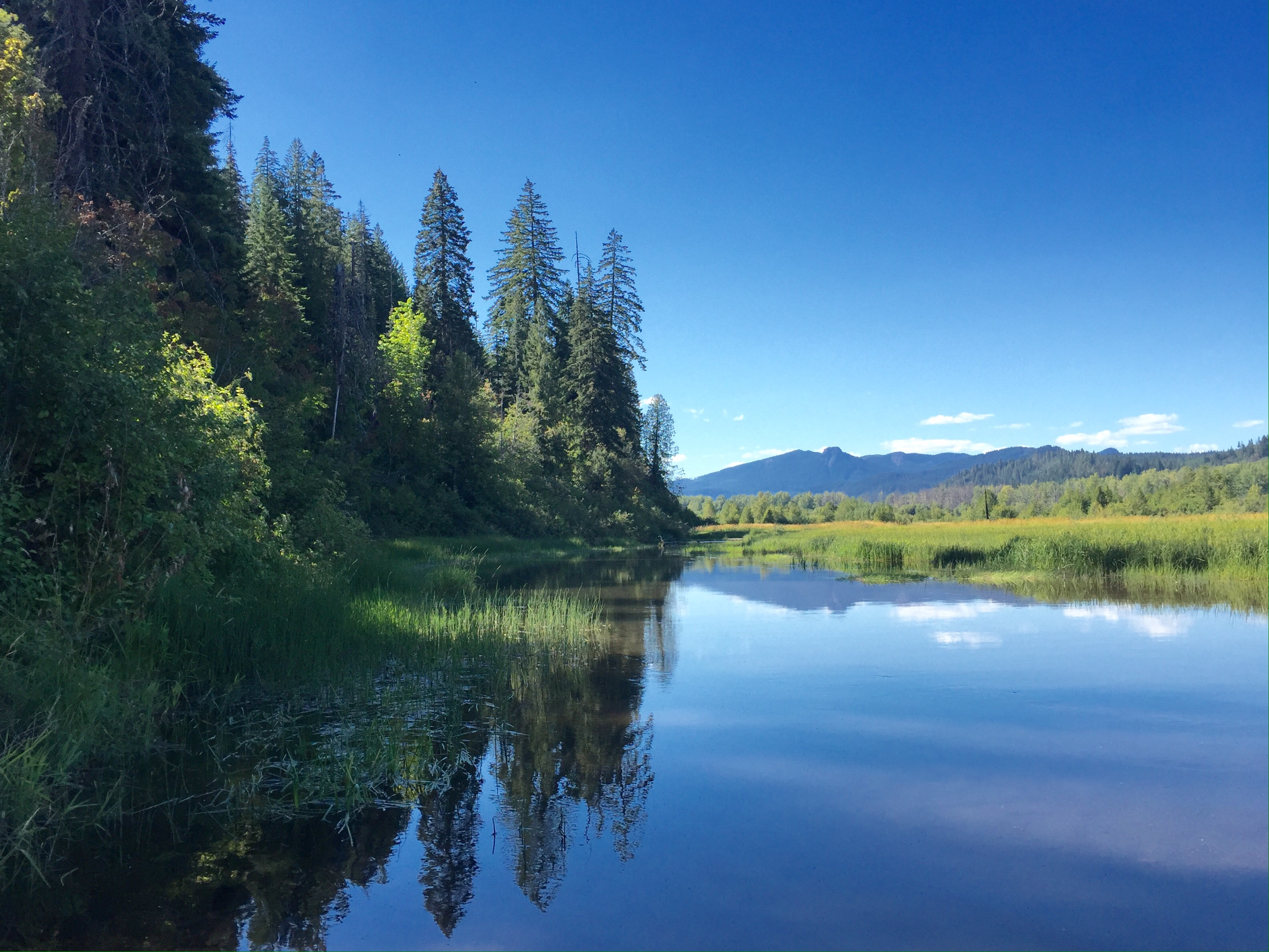 august trout lake and goldendale washington travels